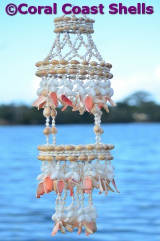 Coral Coast Shells Click To View Products